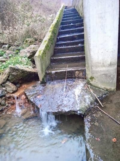 Riblja staza na vodozahvatu MHE Dolac