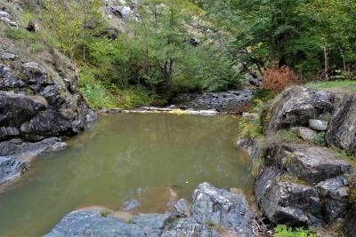 Rijeka Tribija