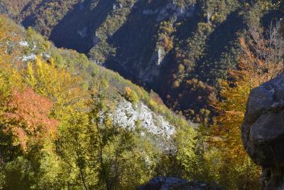 Rijeka Ljuta - kanjon