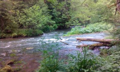 Rijeka Bioštica