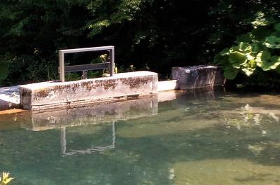 Daskom zatvorena riblja staza na vodozahvatu
