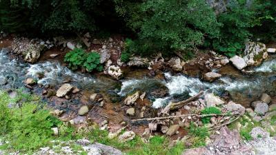 Rijeka Orlja