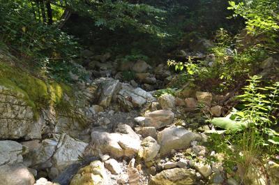 Suho korito rijeke ispod vodozahvata MHE Grablje