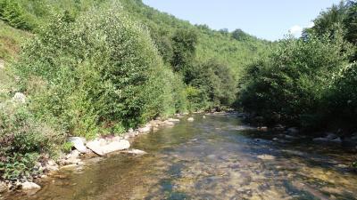 Rijeka Lepenica